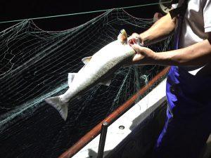 夜の漁に出る漁師さん